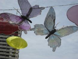 Butterflies decorating the streetscape - September 2009