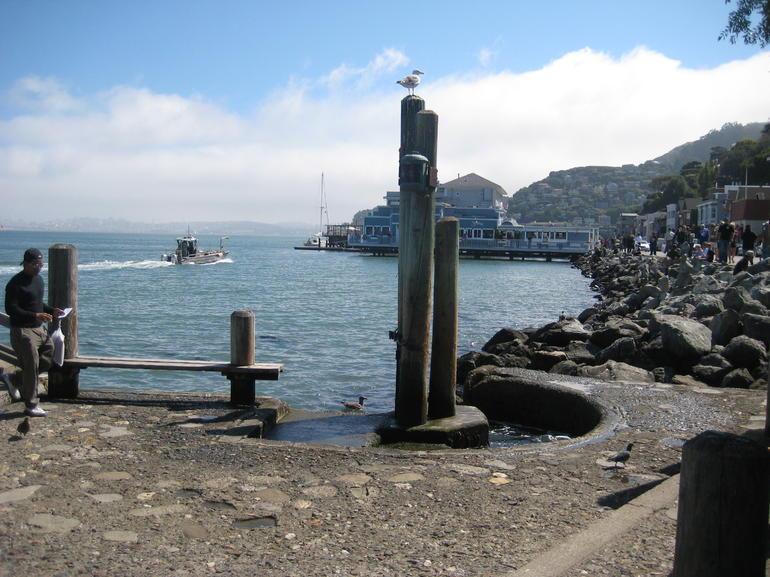 IMG_4929 - San Francisco