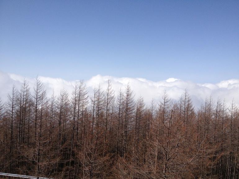 Mt. Fuji and Lake Ashi - Tokyo
