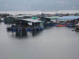 Sam Mun Fishing Village , Jennifer N - October 2012