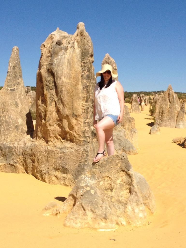 Pinnacles Desert, Koalas, and Sandboarding 4WD Day Tour from Perth photo 20