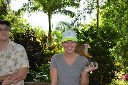 Daughter Randi with a monkey on her shoulder , klcollier75 - January 2016