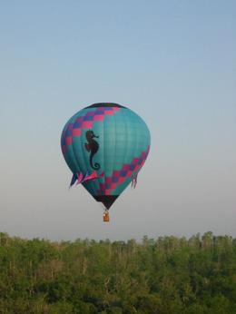 Sea Horse Balloon in flight - October 2009
