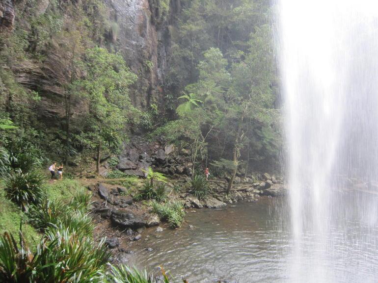 Springbook Fulld Day Bushwalking Tour - Brisbane