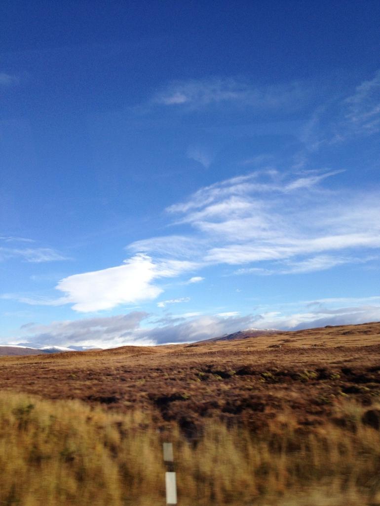 The highland moss - Edinburgh