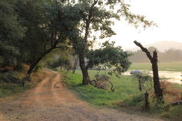 View of the dirt road next to a lake. , shalinihenry - November 2014