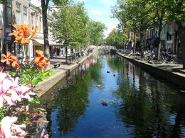 One hour free time in Delft , Gabriella G - August 2015