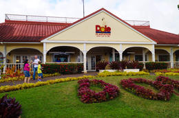 Dole Plantation , Apoetess - June 2012