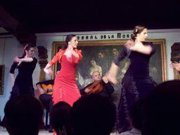 Espectaculo de flamenco en Corral de la Moreria, Alis - February 2015