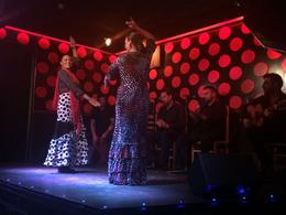 a wonderful set of musicians and 2 flamenco dancers from the show , Lindsey S - May 2014