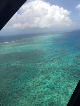 The reef from the front middle seat of the helicopter - a must do!! , jeanievan - September 2016