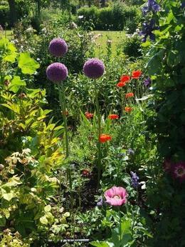 Monet's Gardens at their finest , sheryn&neal - July 2017
