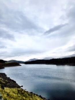Loch's for dayz. , Maureen L - November 2017