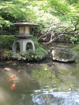 Picture from the gardens around the Tea House., Jennifer M - August 2008