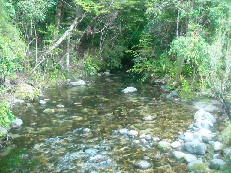 Te Anau Glow Worm Cave Entrance - Te Anau