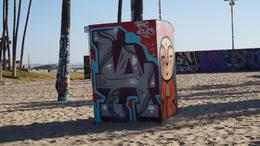 Venice Beach , moedesro - January 2017