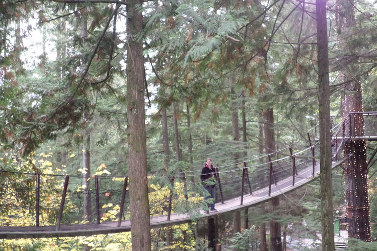 Skip the Line:Capilano Suspension Bridge Park Ticket w/Shuttle from Vancouver photo 16