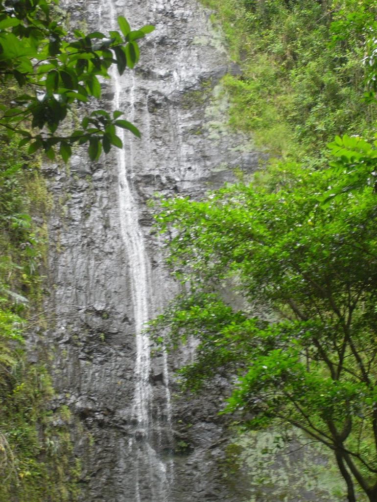 Manoa Waterfall - 17-July-2009 - Oahu