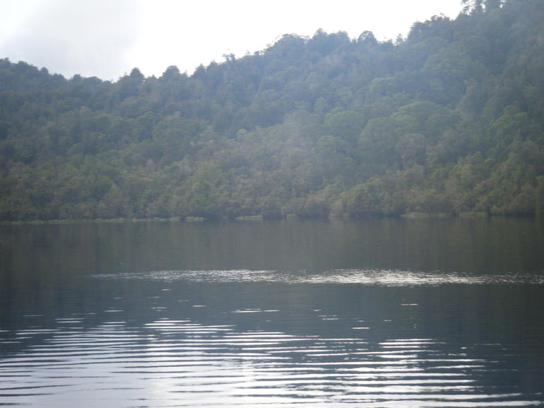 Pic of the Gordon River - Tasmania