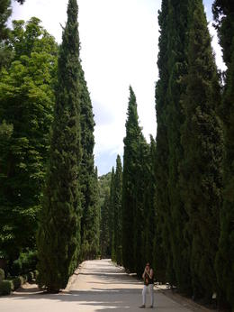 The beautiful gardens, Laura All Over - August 2014