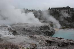 Te Puia geothermal lands , Heather F - July 2017