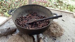 Cacao beans roasting over a wood fire. The smell was heavenly! , Allan - September 2015