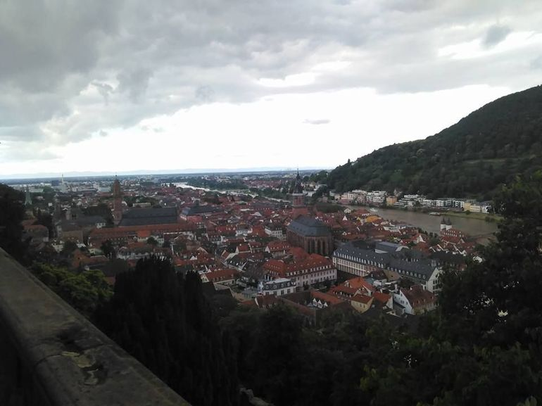 Heidelberg and Rhine Valley Day Trip from Frankfurt Incl Wine Tasting and Dinner photo 24