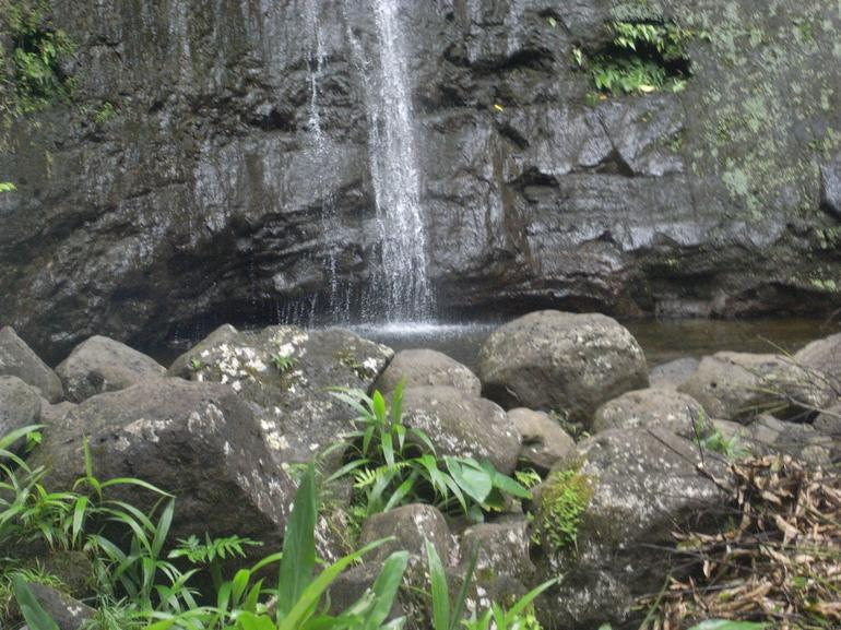 Manoa Waterfall - Oahu