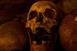 Close up of one of the skulls in the wall of them. , ntibbe - December 2012