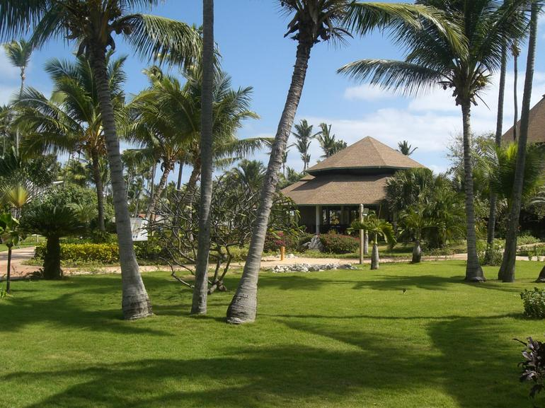 Garden view from reception - Punta Cana