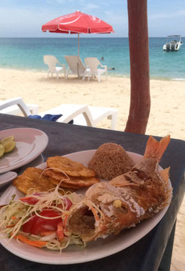 This is the complementary lunch, red snapper. It was delicious! :- , Lars U - October 2015