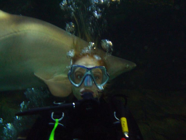 Sharky!! - Sydney