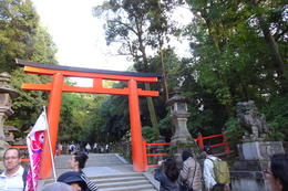 entrance to Kasuga shrine , Vega R - November 2016