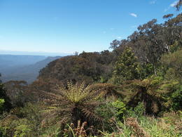 View of blue mountains , Edrie M - November 2016