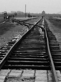 Auschwitz-Birkenau , Jennifer E - November 2015