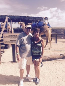 Here we are getting ready for our camel ride. These guys are huge! , Jeffrey Dana L - December 2015