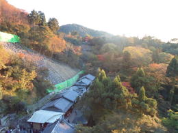 Trip to Kyoto November 2014 , jane.nancekievill - December 2014