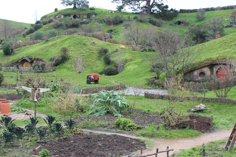 2 Day Waitomo Caves, Hobbiton Movie Set and Rotorua Tour from Auckland photo 11