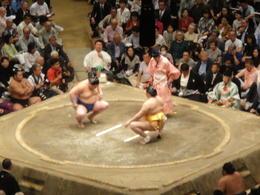 sumo wrestlers , Vivian L - September 2017