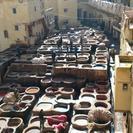 Fez Medina 4-Hour Guided Walking Tour, Fez, MARRUECOS