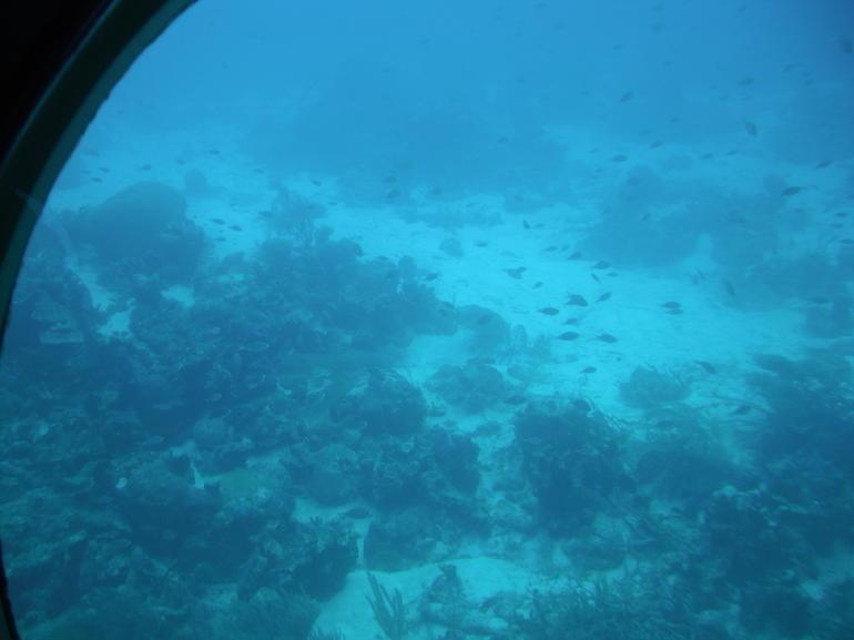 Aruba sub trip - Aruba