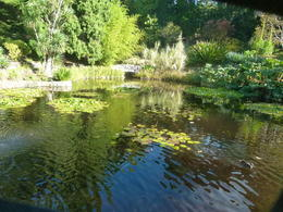 Touring gardens and love water scenes. , Robert M - May 2014
