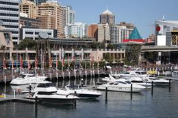 Luxury yachts moored at Darling Harbour on a sunny day - November 2011