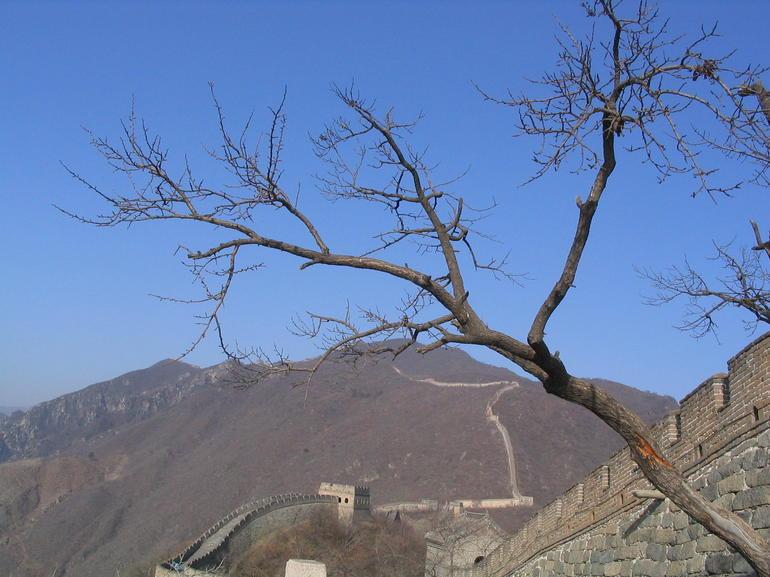 IMG_1545.JPG - Beijing