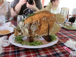 Lunch includes local Elephant Eared fish , Mitch - July 2016