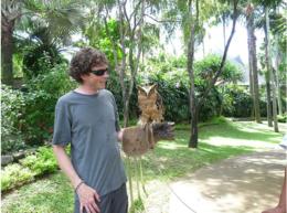 Holding a pesky owl at the Bali Bird Park., kellythepea - September 2010