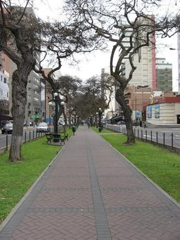 View of a main street in the Miraflores District. I was there in September, hence the lack of vegetation on the trees. Must be beautiful in the spring and summer months!, Bandit - December 2010