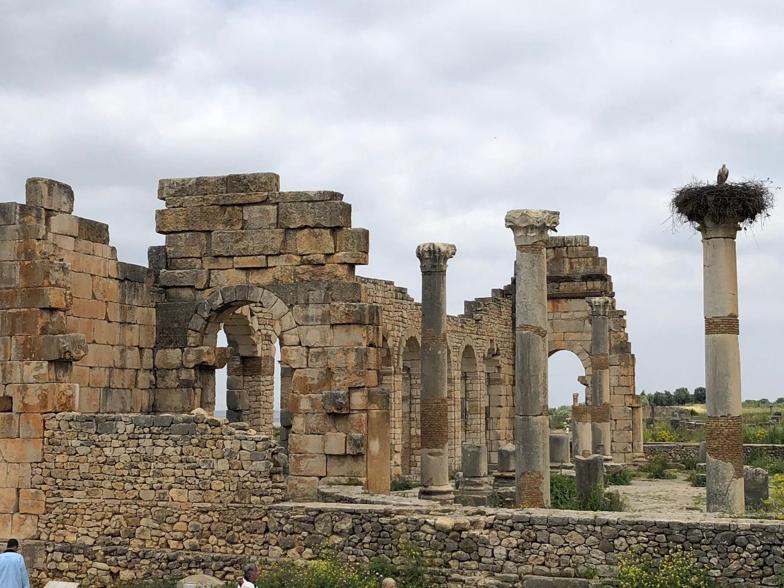 MAIS FOTOS, Meknes and Volubilis Day Trip from Fez