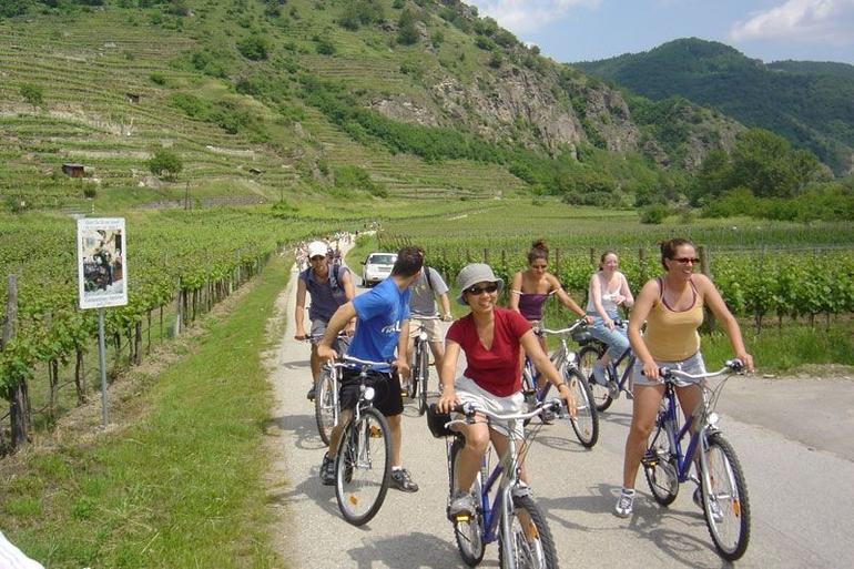 Biking - Vienna