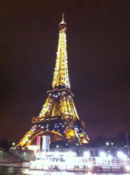 The flashing lights of the Eiffel Tower come on every hour, taken whilst on river cruise., Michele H - October 2010